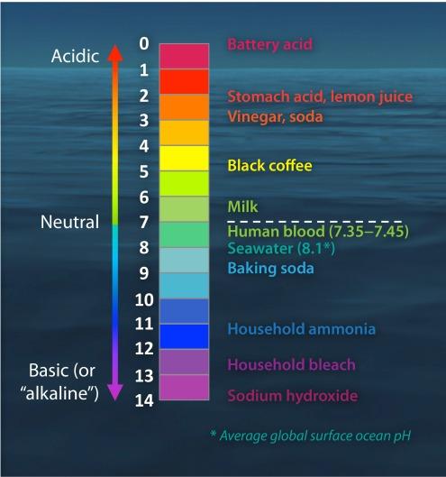 Ocean-pH-scale